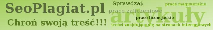 Seo Plagiat - program do wyszukiwania plagiatów